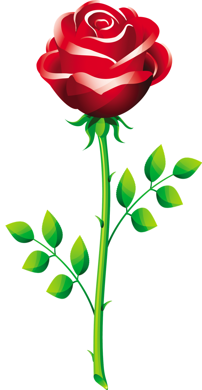 vector roses cliparts co