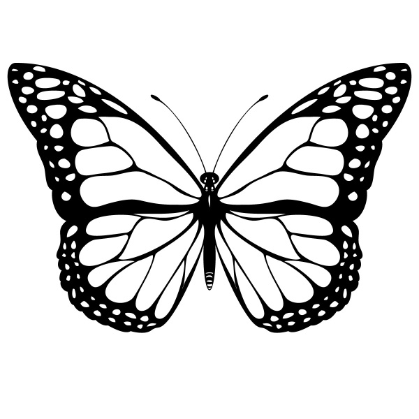 Butterfly designs to color - photo#22