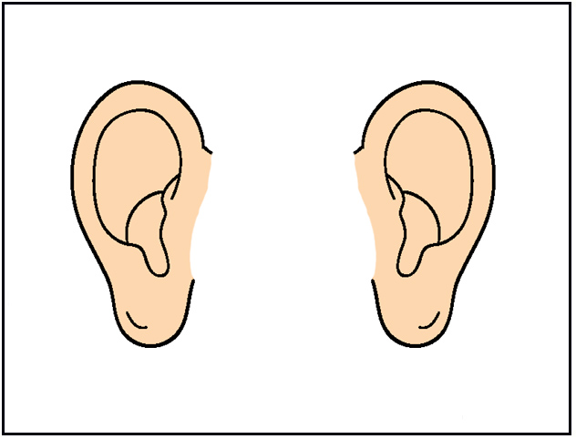 Ear Clipart For Kids C...