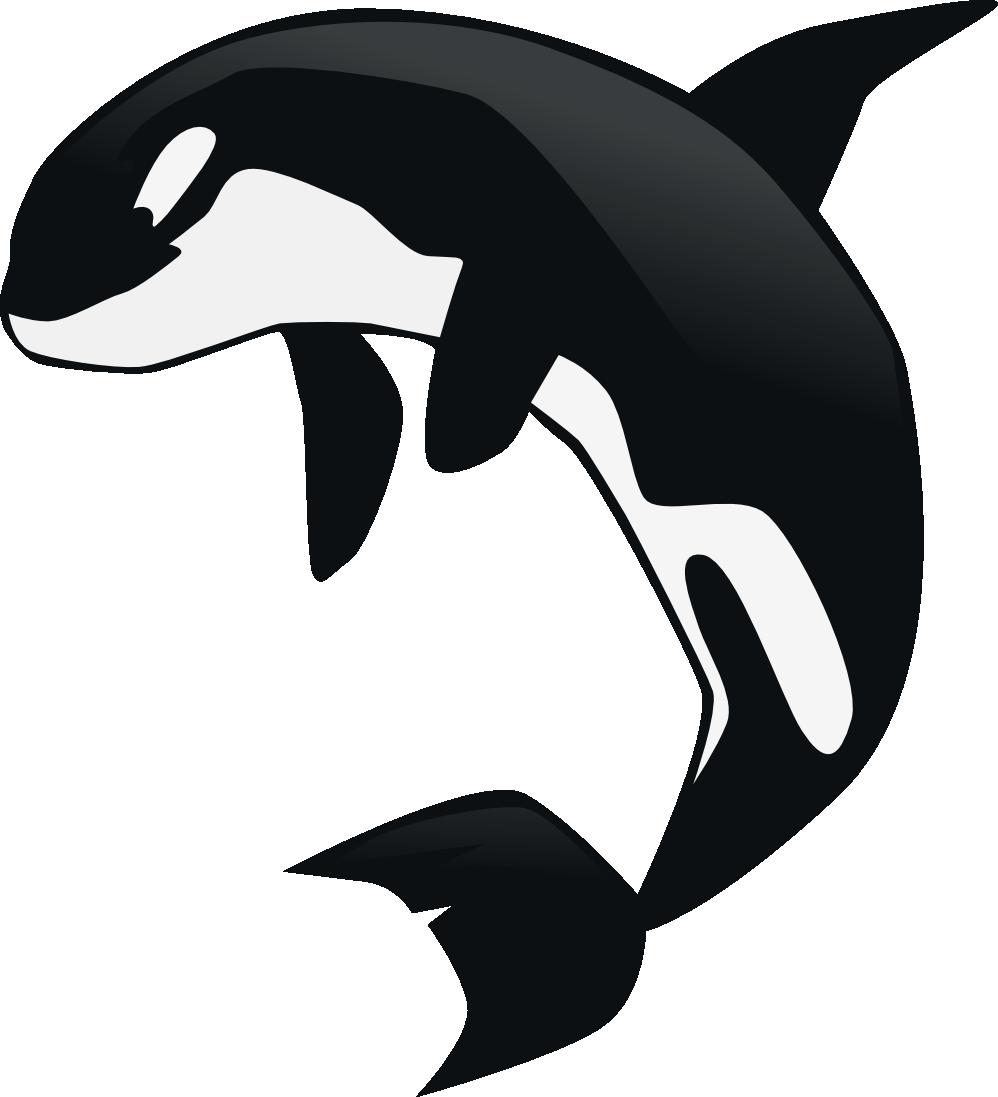 Orca Whale Clip Art - ClipArt Best