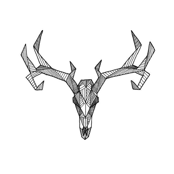 deer skull coloring pages - photo#35