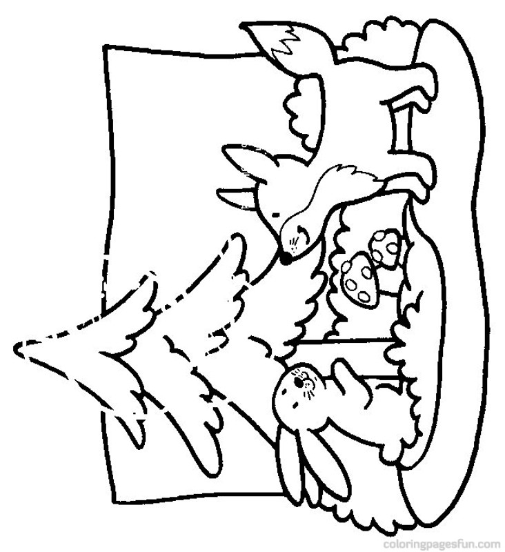 g fox co coloring pages - photo #17