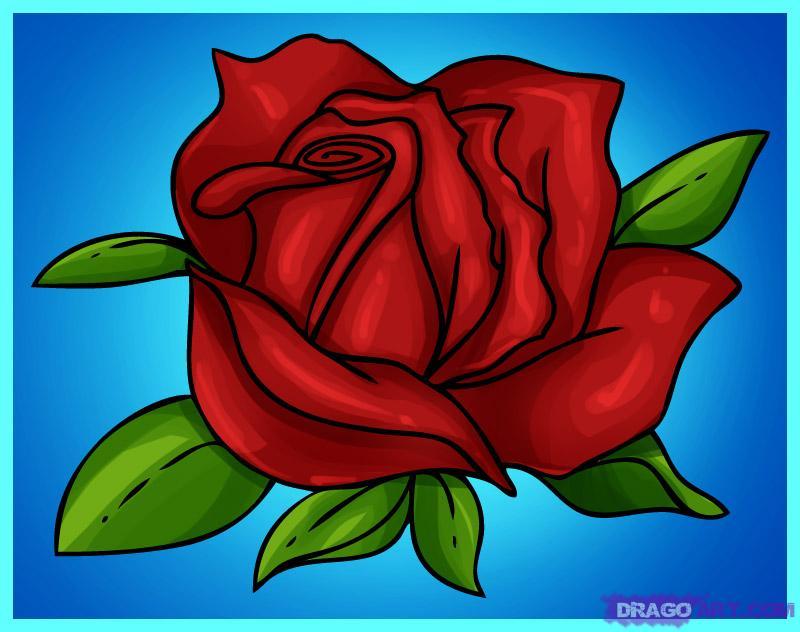 Цветы розы рисунки 145