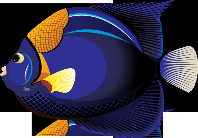 Tropical Fish Clip Art Free - Cliparts.co