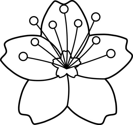 Flower Outline Drawing : Outline images of flowers cliparts
