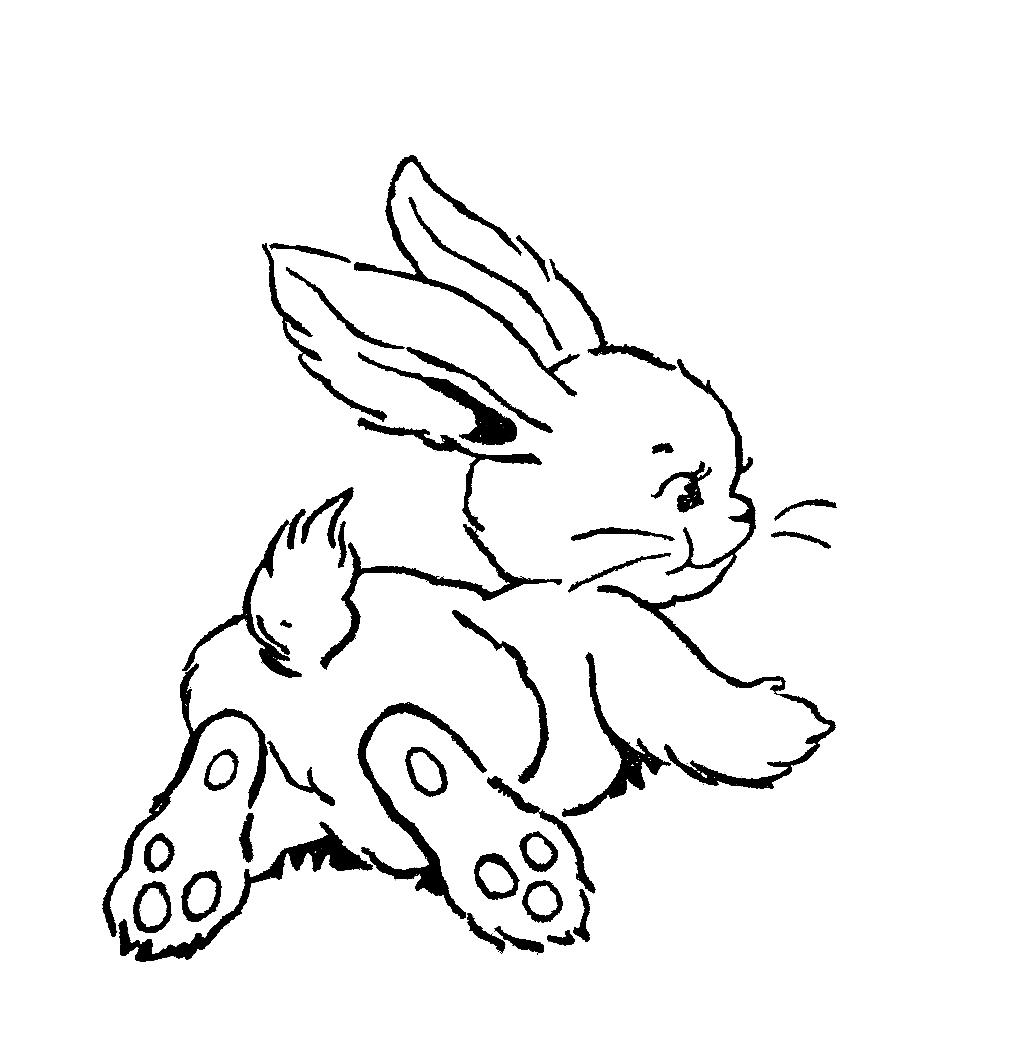 Cartoon rabbit black and white