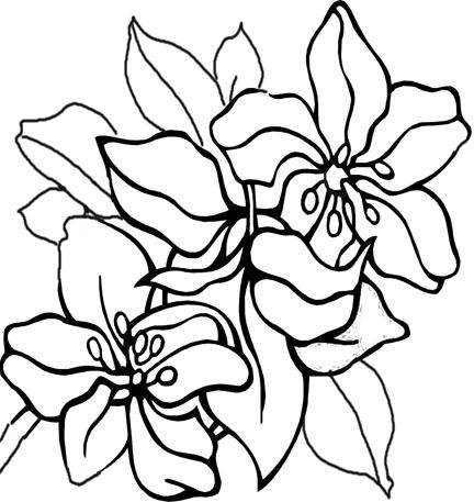 flower outline for kids. Black Bedroom Furniture Sets. Home Design Ideas