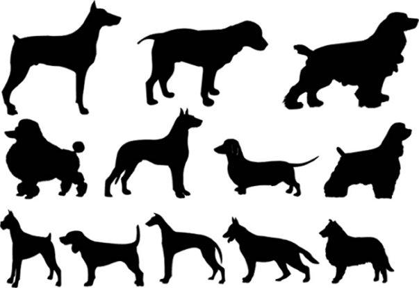 Dog logo Stock Vectors Royalty Free Dog logo
