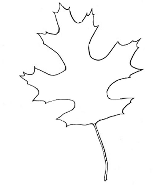 autumn leaf outline clipartsco