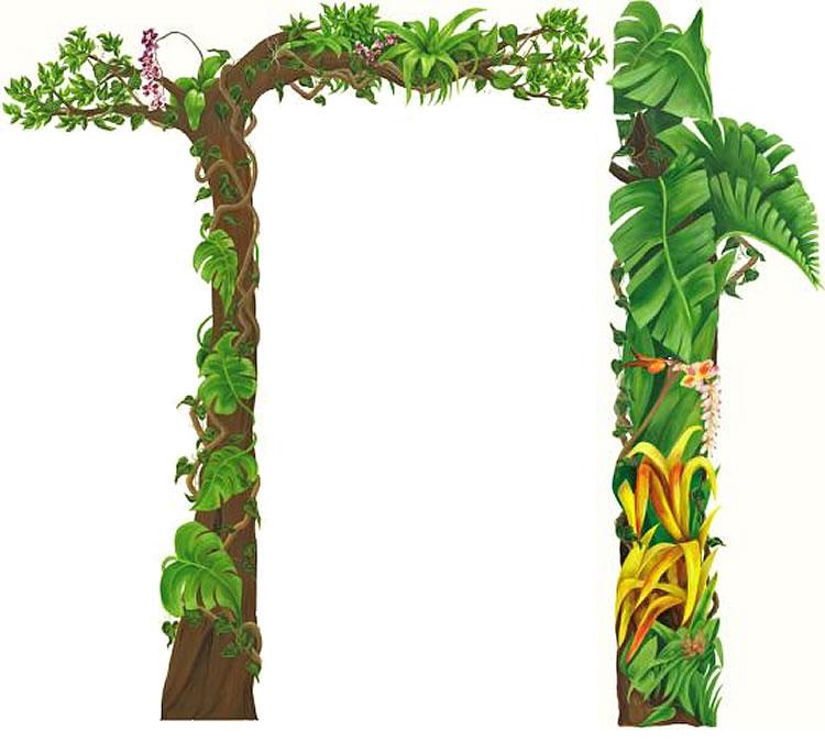 free jungle border clipart - photo #6