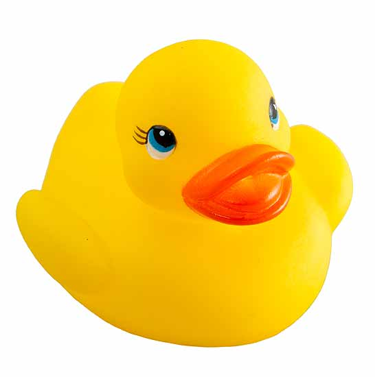 Yellow Rubber Duckies - Birthday Party - Party & Special Occasions