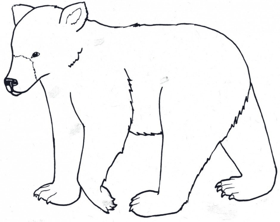 Cartoon Polar Bear Cliparts Co