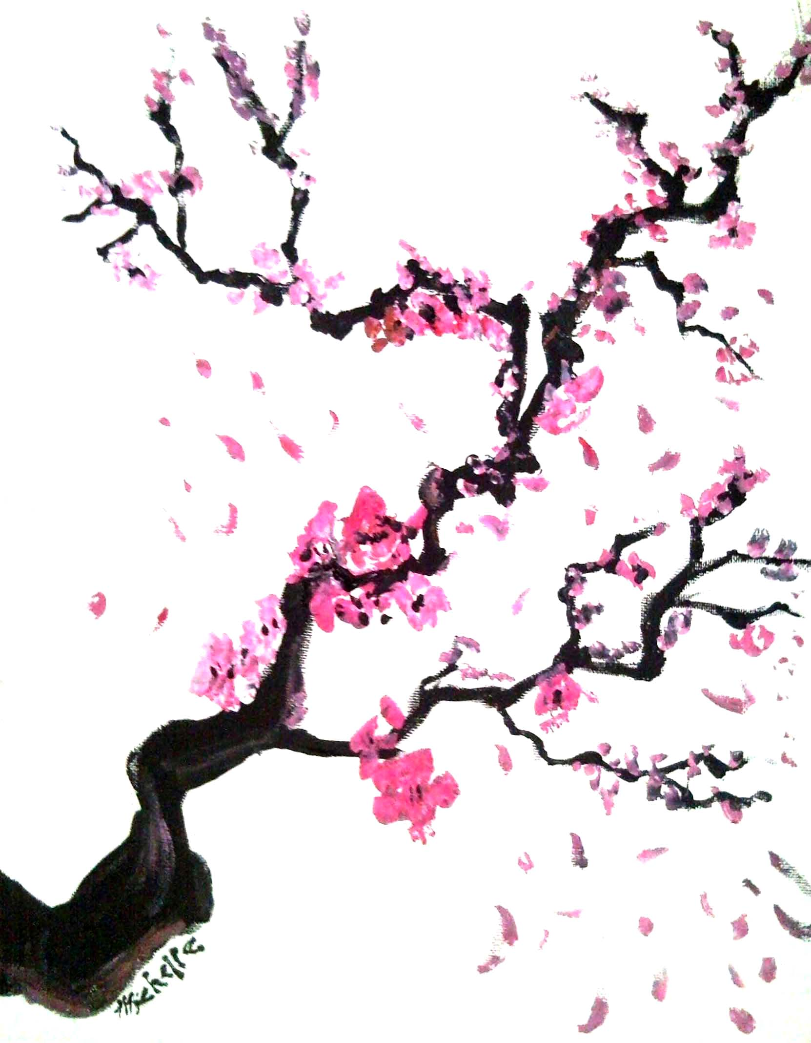 Blossom Tree Drawing: Cherry Blossom Tree Cartoon