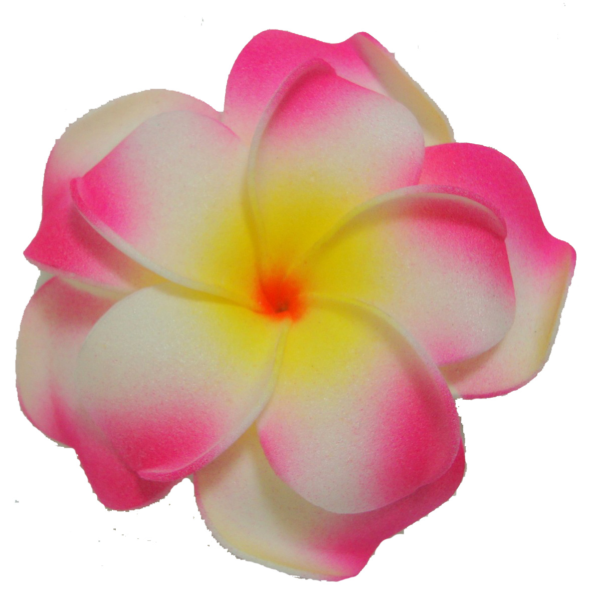 Plumeria Clip Art - Cliparts.co