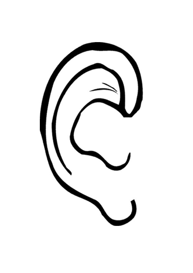 Coloring page ear - img 9527.