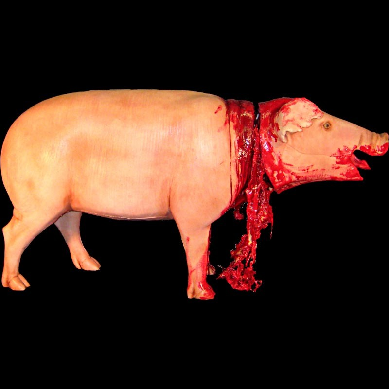 stylistic analysis for death of a pig by e b white Hawk roosting by ted hughes: summary and critical analysis i give death i am death stylistic qualities of hughes' poetry.