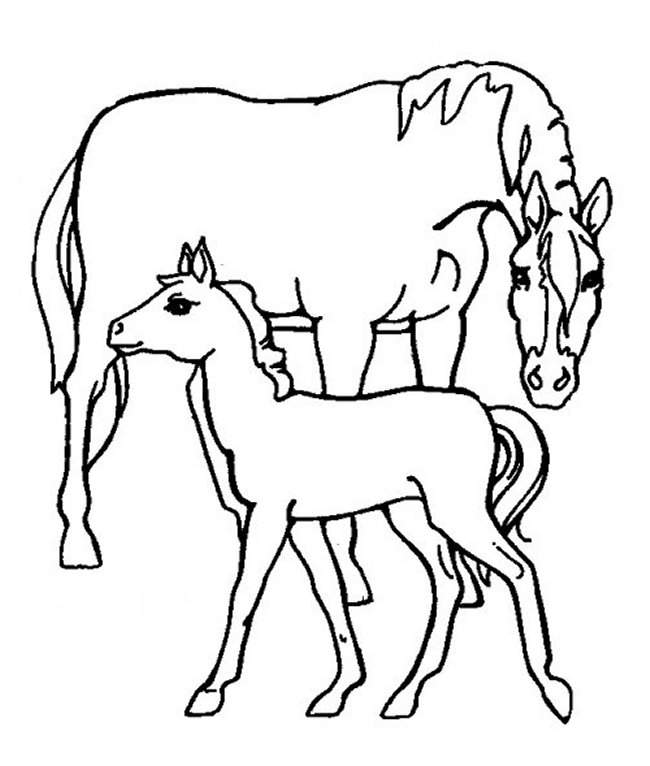 Horse Farm Animal Coloring Pages