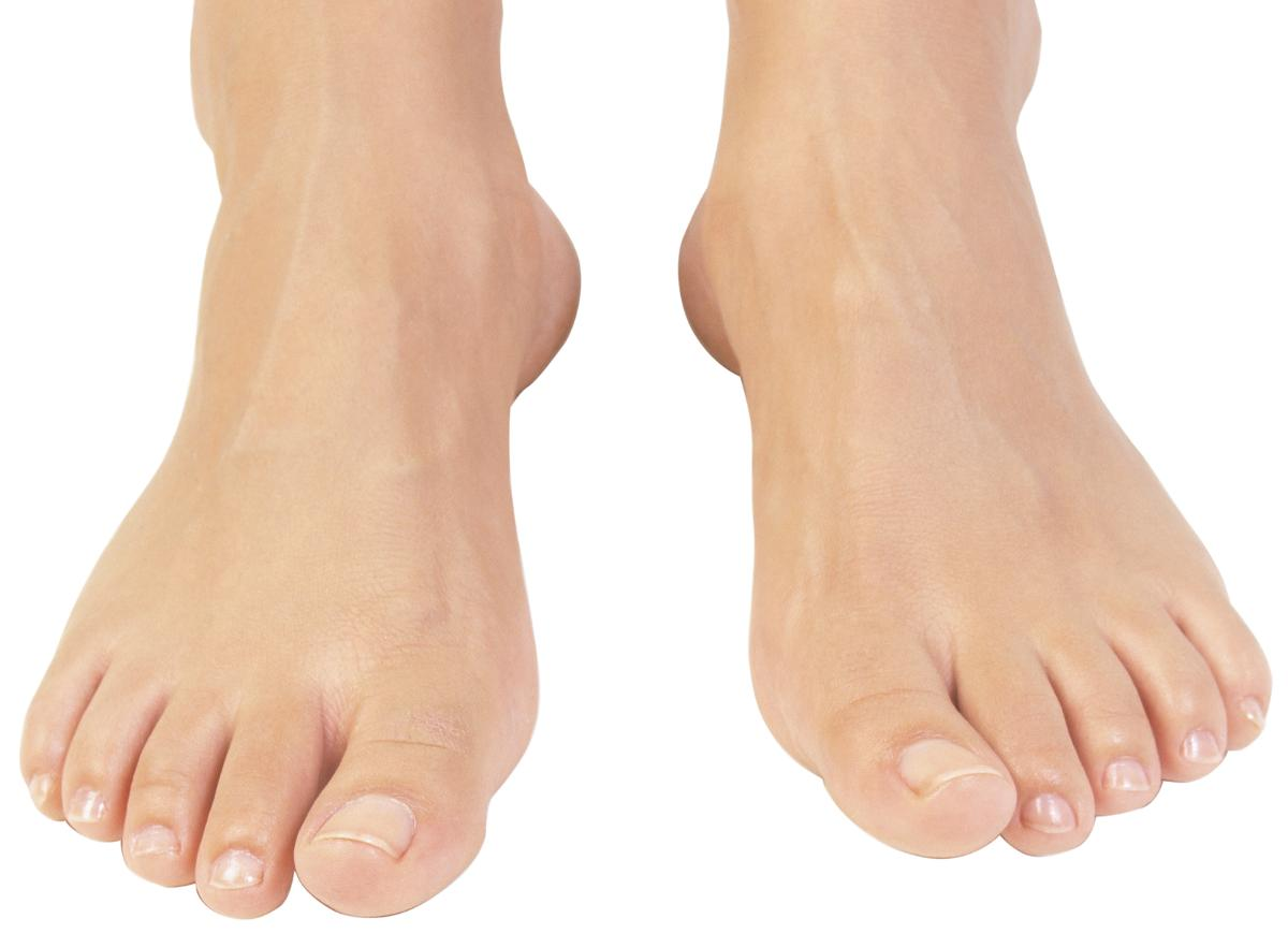 Foot - Cliparts.co