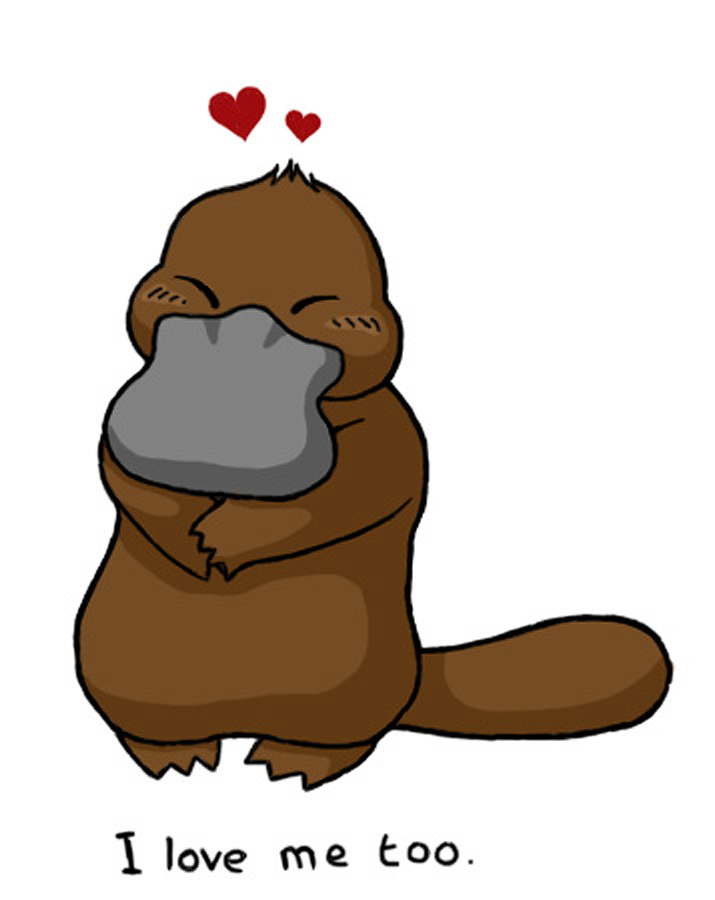 Platypus Pictures Cartoon - Cliparts.co