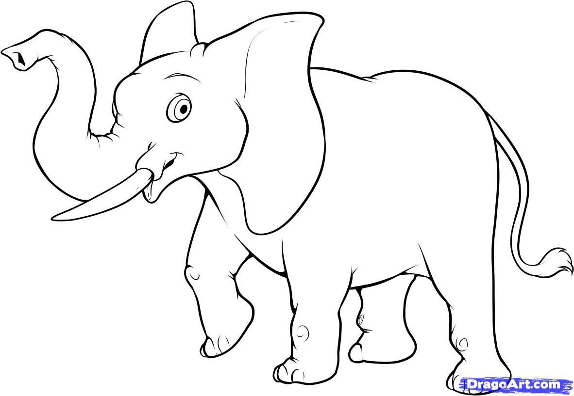 Эскиз рисунков слона