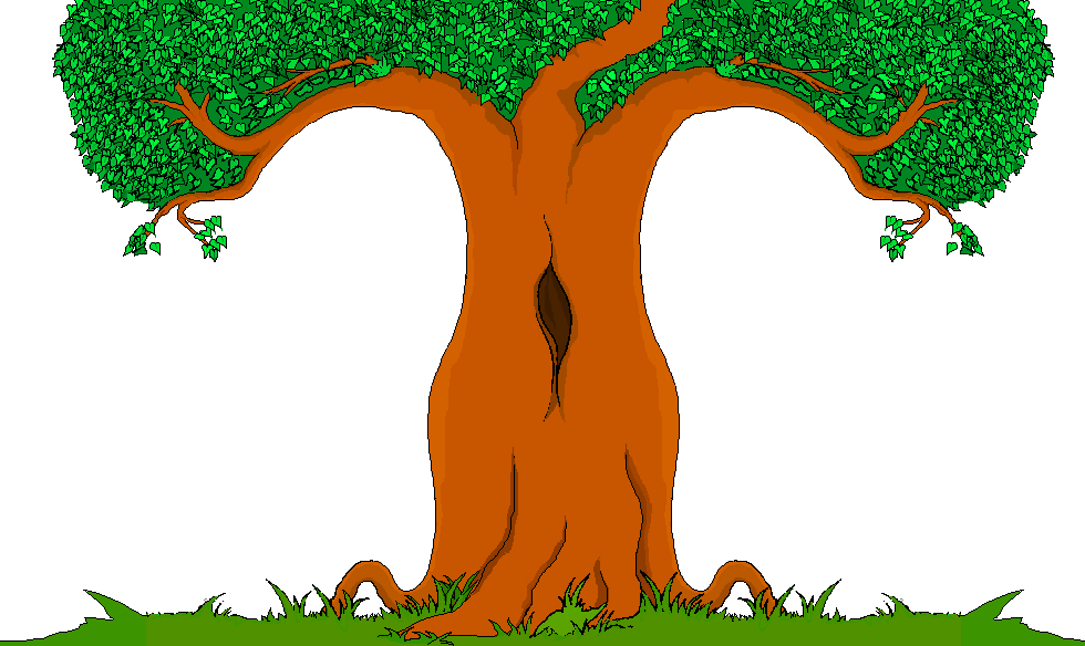 TREE CARTOON PNG - Cliparts.co
