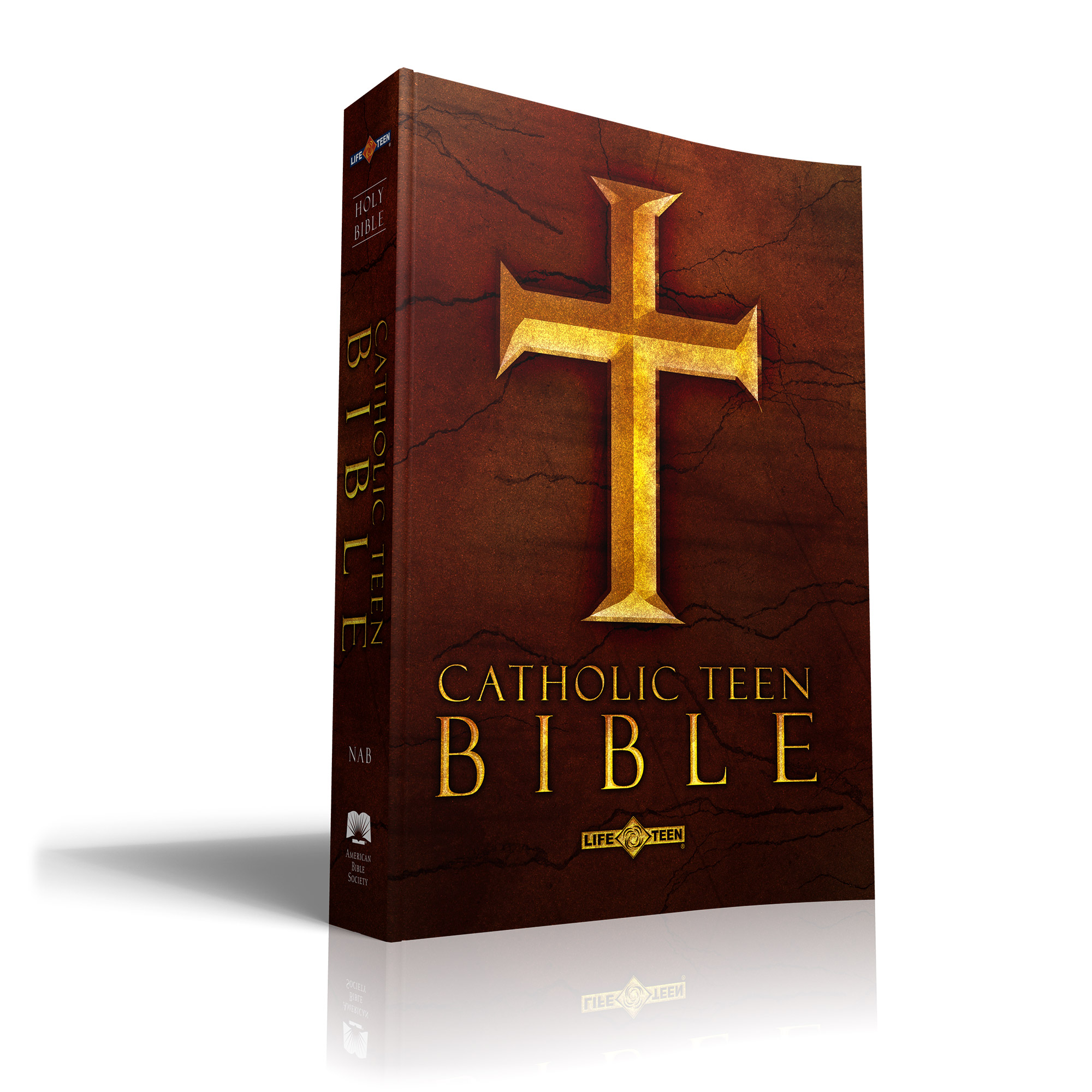 Catholic Youth Bible: Catholic Teen Bible From Life Teen