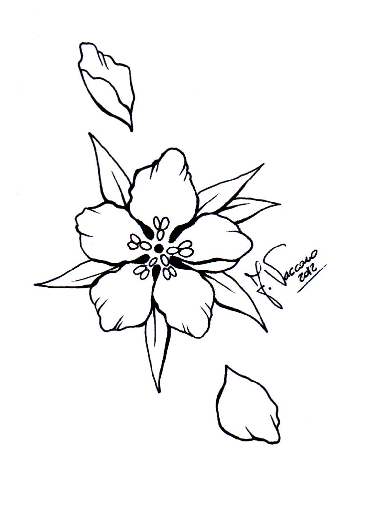 Red Flower Line Drawing : Peach blossom tattoo cliparts