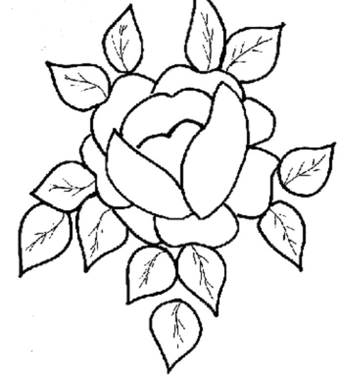 Cute And Beautiful Flower Coloring Pages | HelloColoring.com ...