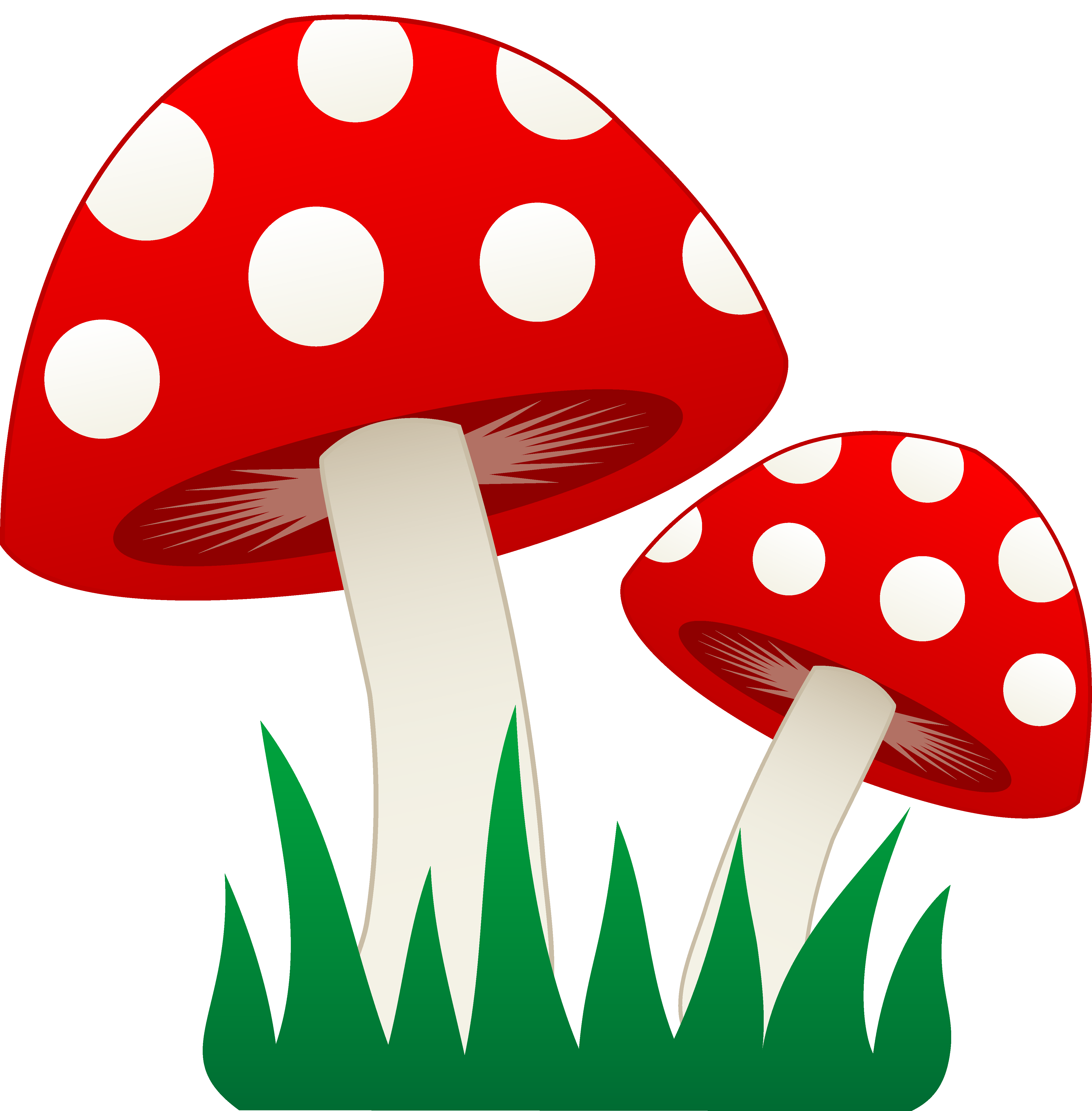 fungi clipart rh worldartsme com Fungi Structure fungi clipart black and white