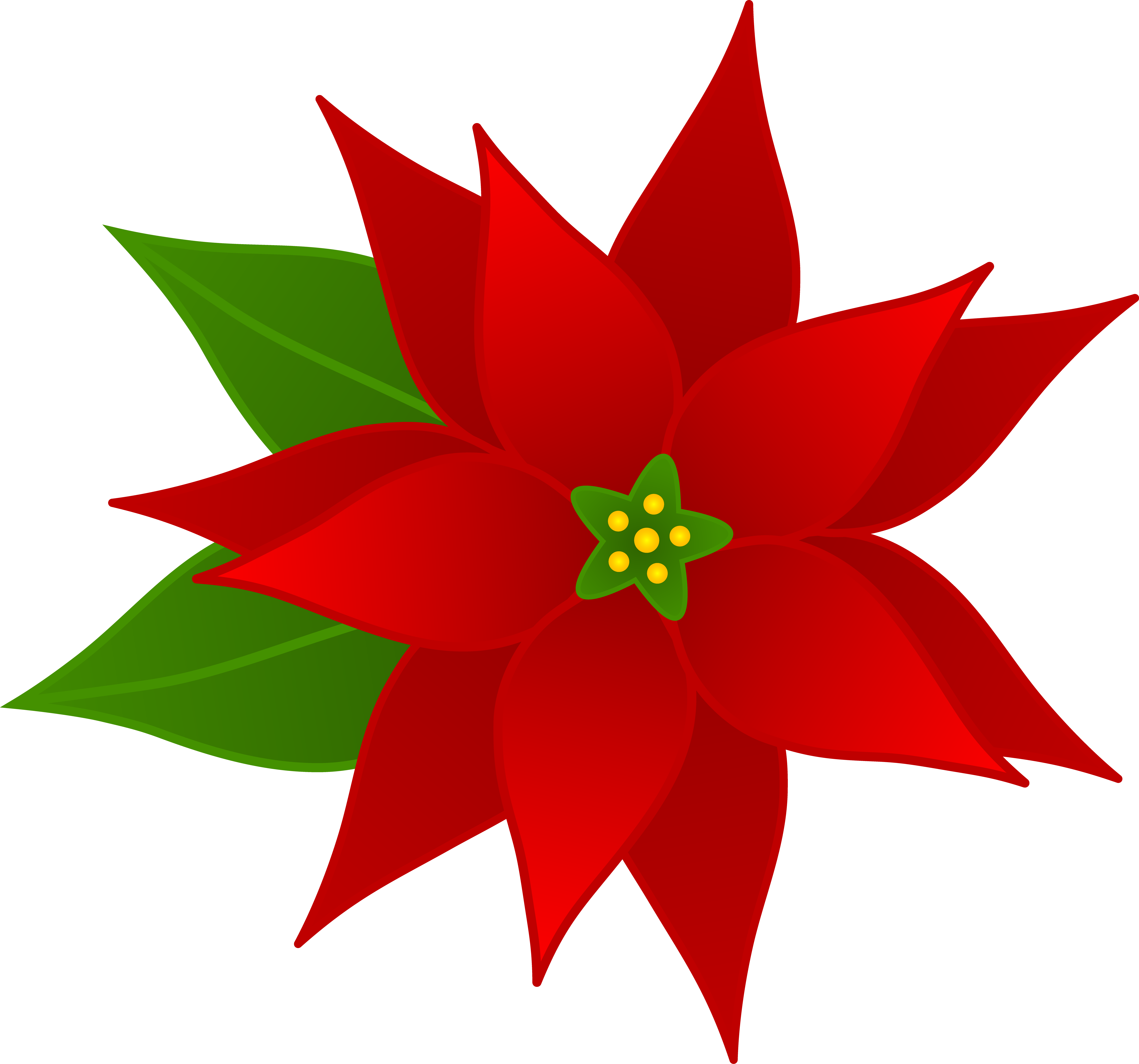 Poinsettia Pictures Free - Cliparts.co
