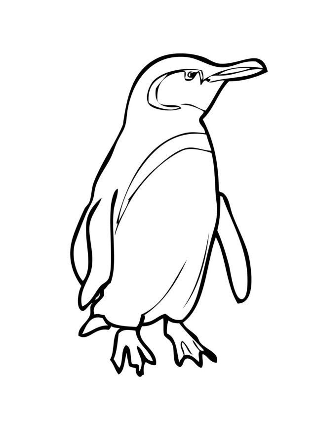 Simplicity image throughout printable penguin coloring pages