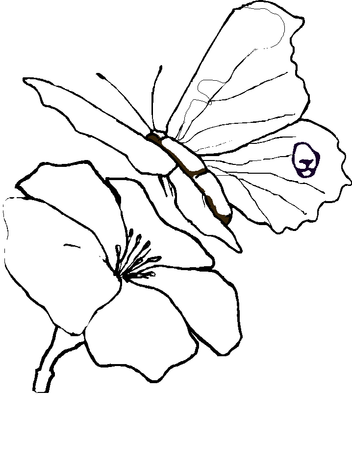 Beautiful Flower Line Drawing : Line drawing of a rose cliparts