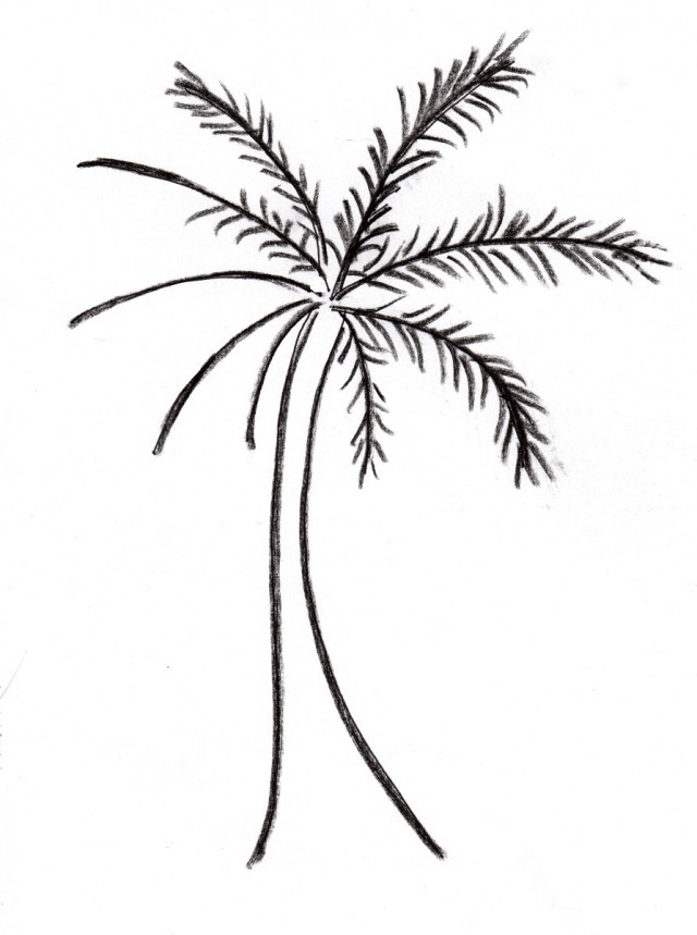 Tree Trunk Coloring Page  RedCabWorcester  RedCabWorcester