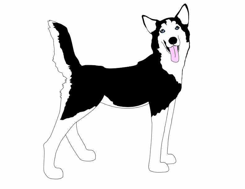 free clipart husky dog - photo #9