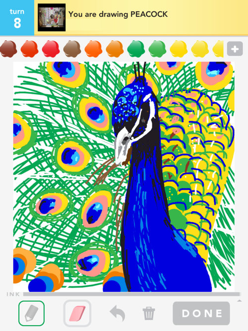 Simple colorful peacock drawing - photo#17
