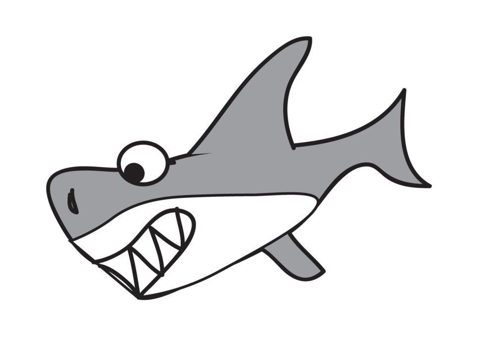 Mind your language how to speak shark  Africa Geographic