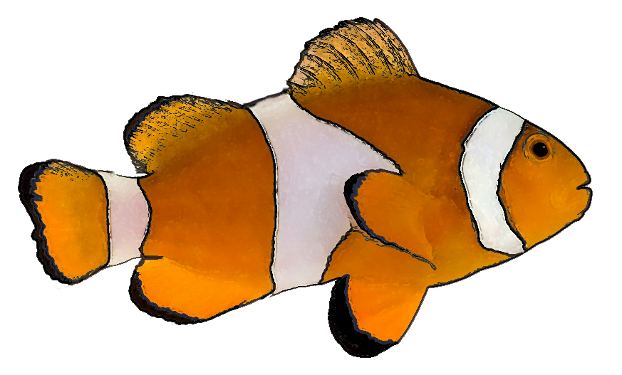 Animated Fish Clip Art - ClipArt Best