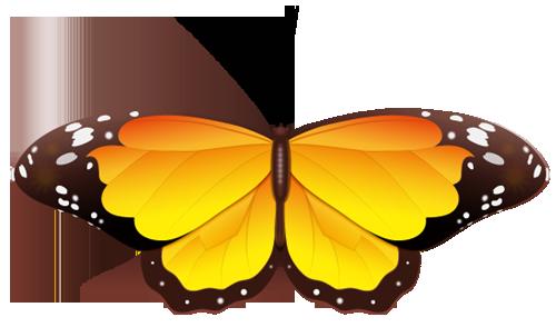 Butterfly wedding 2017