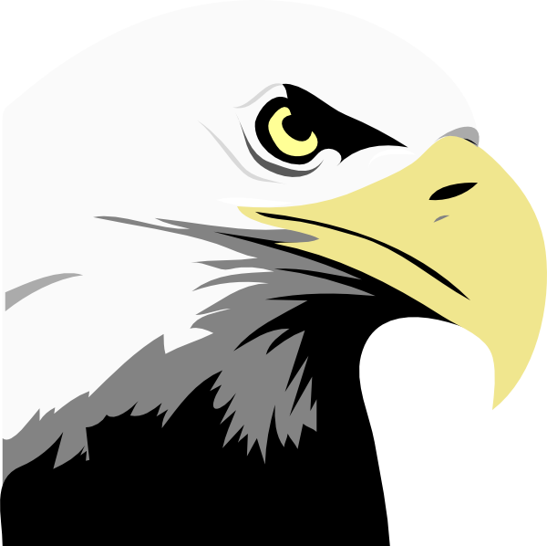 Bald Eagle Head Clip art - Vector graphics - Download vector clip ...