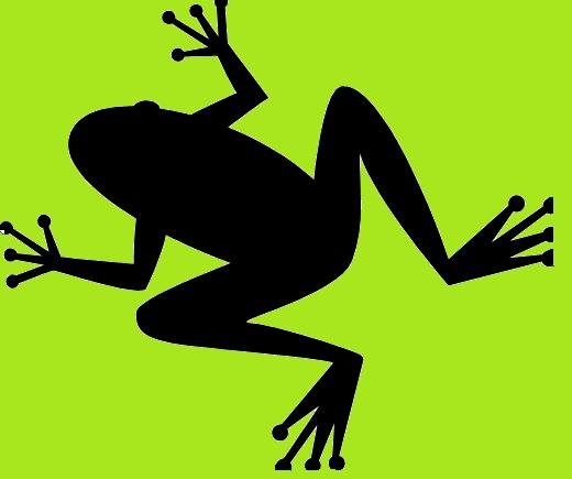Pix For > Jumping Frog Silhouette