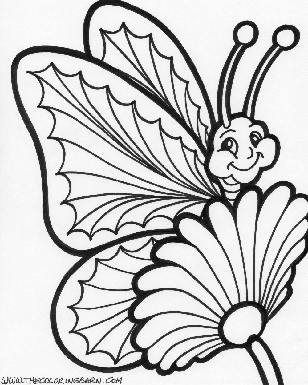 realistic butterflies coloring pages - photo#11