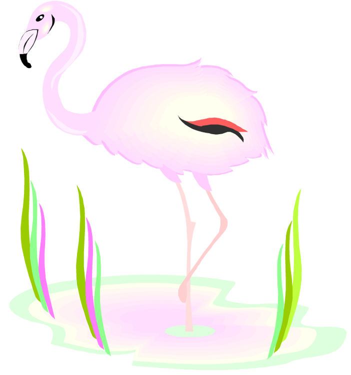Flamingo Clip Art Free - Cliparts.co