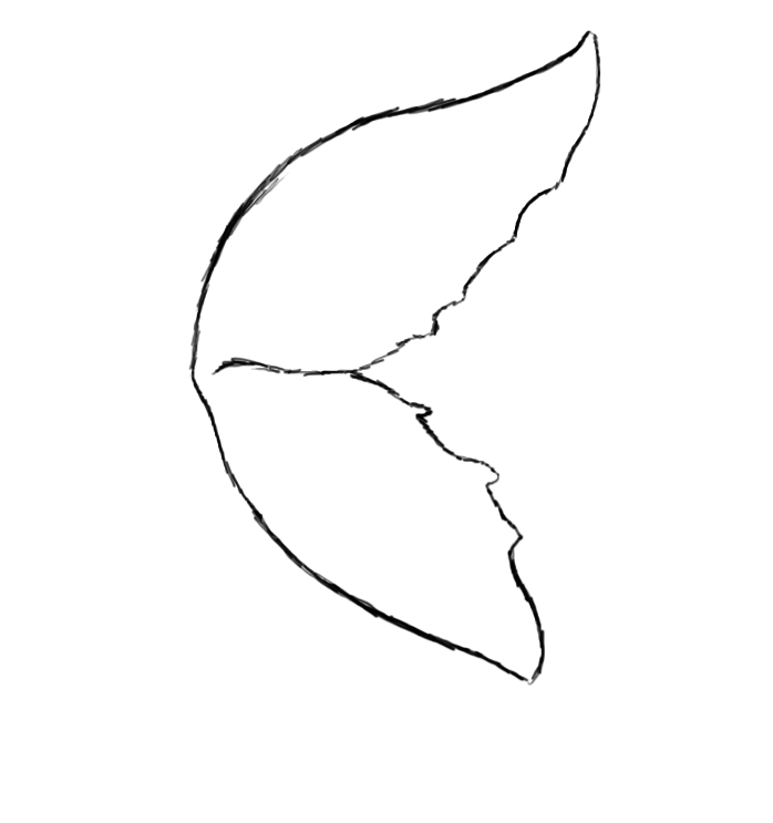 how to draw wings easy