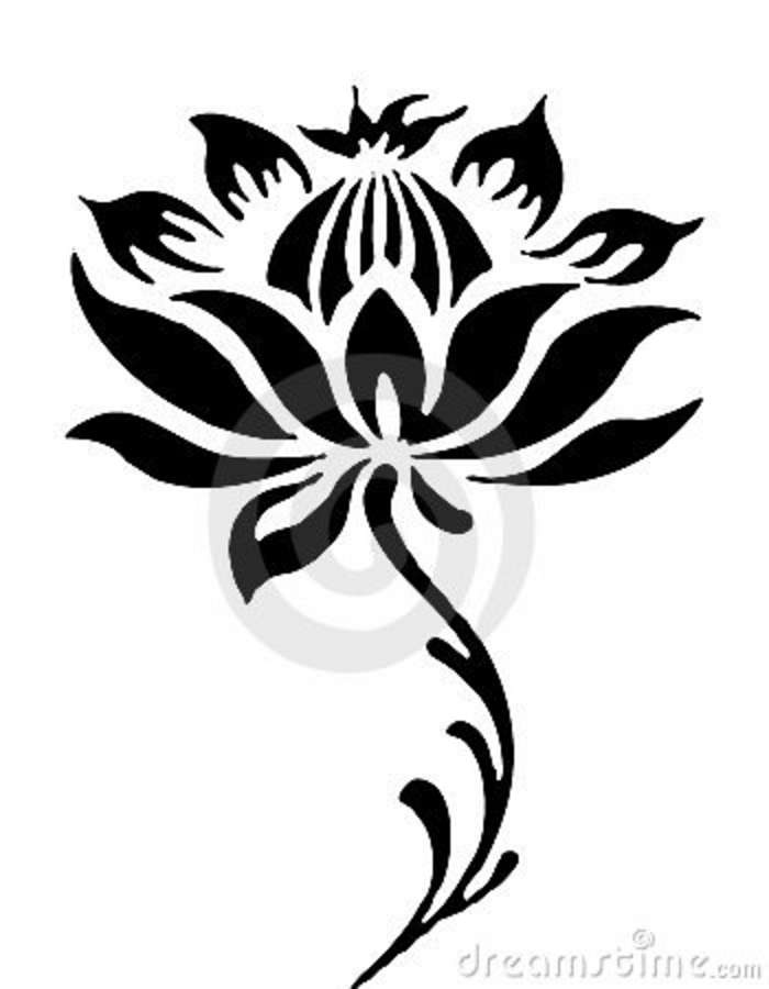Line Drawing Of Lotus Flower : Flower line drawing cliparts