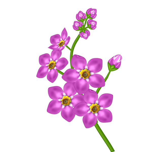 flower clipart with transparent background - photo #3
