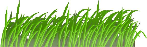 Cartoon Grass Texture - Cliparts co