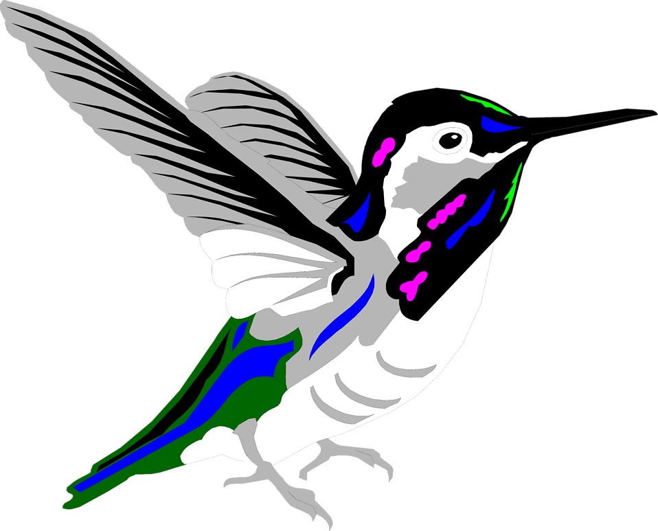 Hummingbird Clipart Free - Cliparts.co
