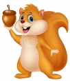 Squirrel with nut cartoon