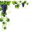 Grape vines clip art borders