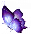 Butterfly Background Images Stock Photos amp Vectors